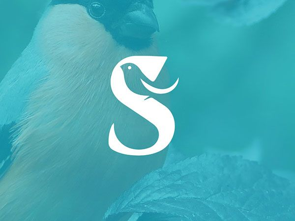 Sjabloon logo vogel